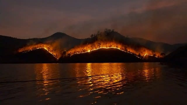 What Causes Wildfires